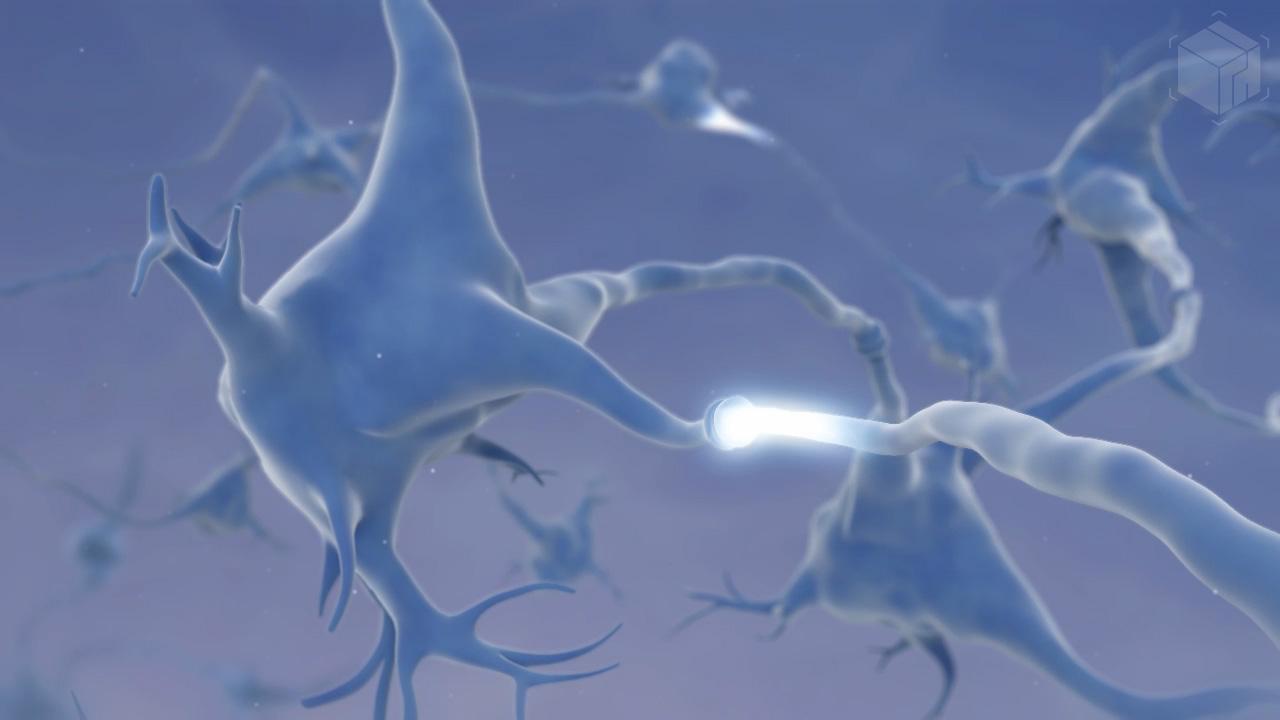 Medical Visualization - Synapses Behavior Animation