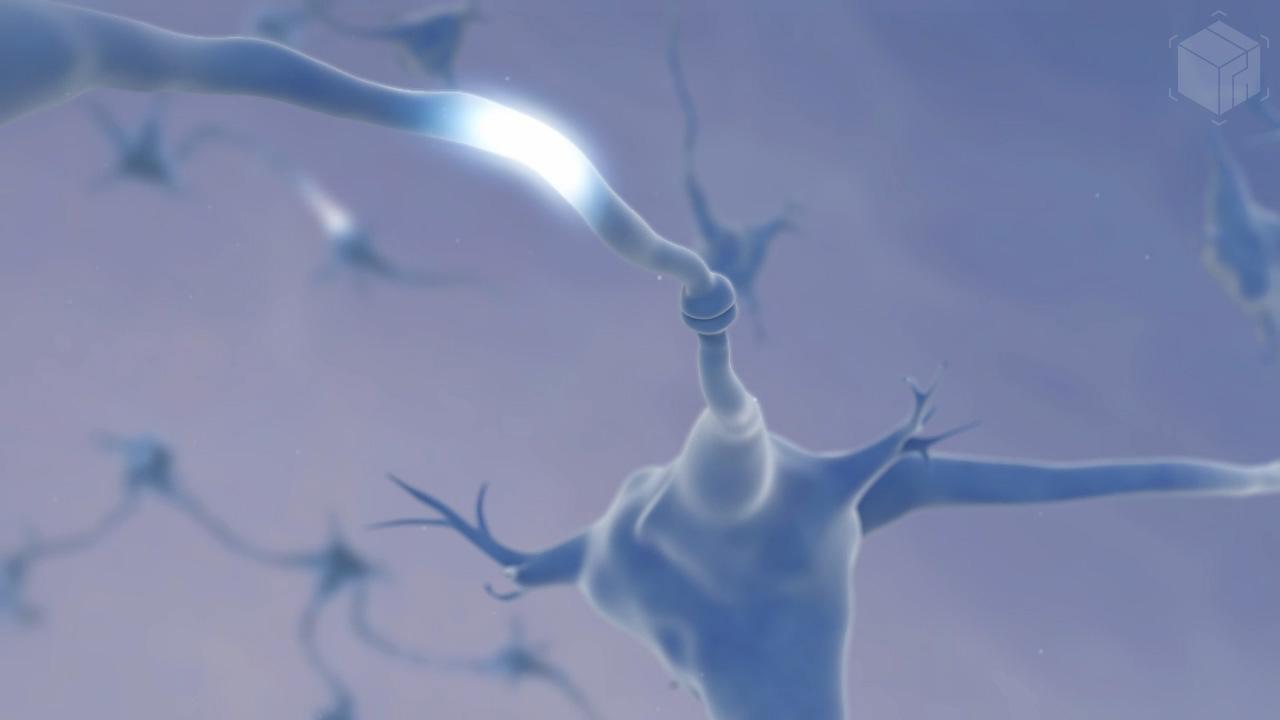 Medical Visualization - Synapses Animation