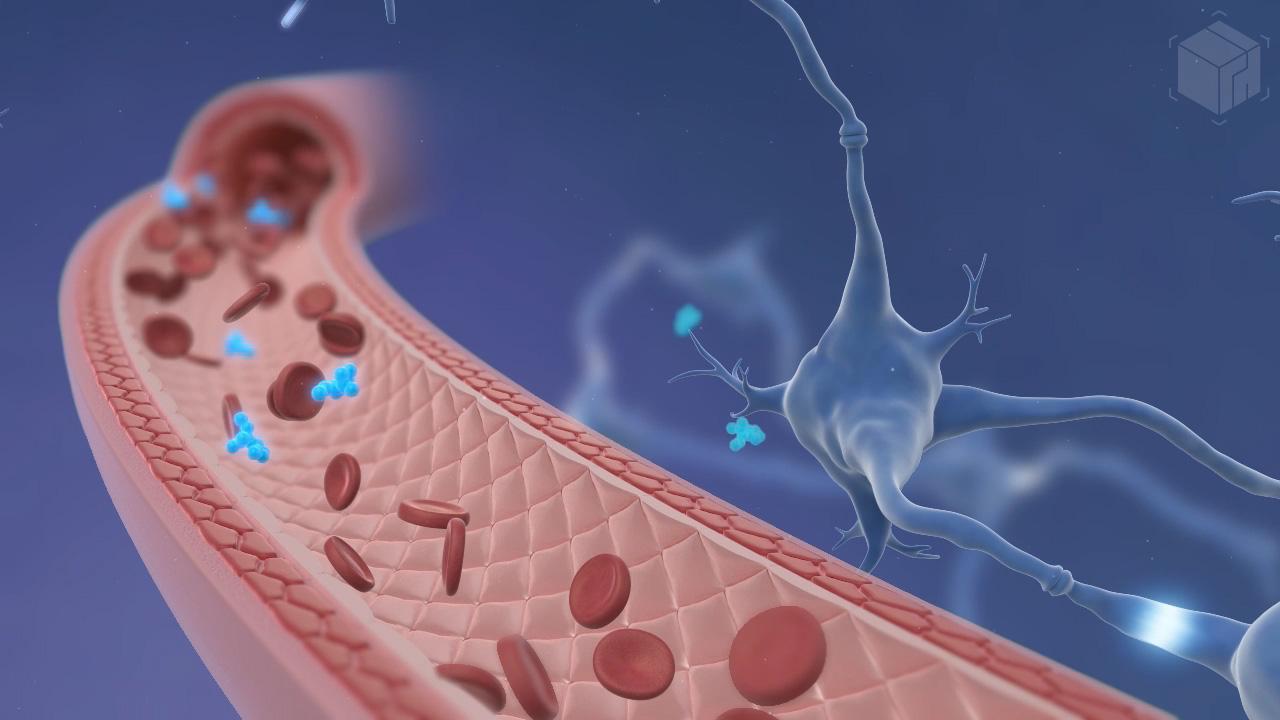 Medical Visualization - Bloodstream Animation
